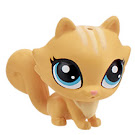 Littlest Pet Shop City Rides Pixie Petite (#219) Pet
