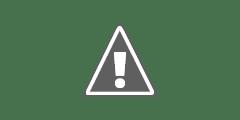 Cara Custom/Setting Domain Di Google Domains Ke Blogger Blogspot