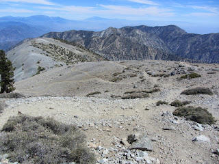 View east toward Mt. Harwood from the side of Mt. Baldy