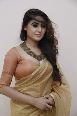 Sony Charishta In Golden Saree New Stills