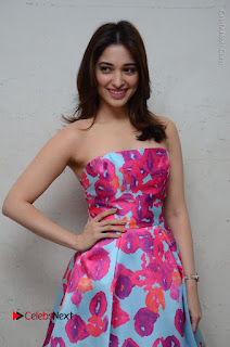 Actress Tamanna Latest Images in Floral Short Dress at Okkadochadu Movie Promotions  0099.JPG