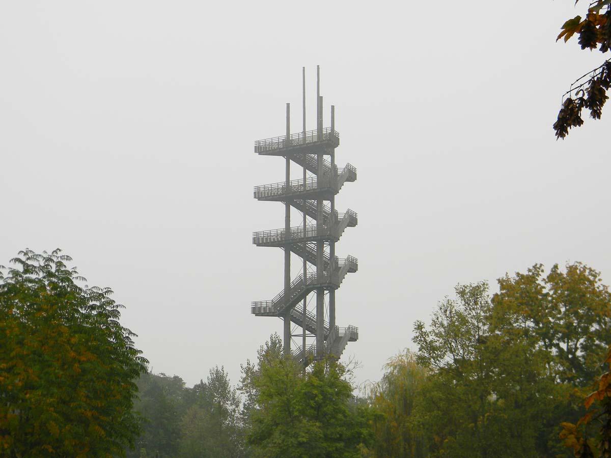 Weißtannenturm, brume en automne, kehl