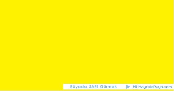 Rüyada Sarının Görülmesi