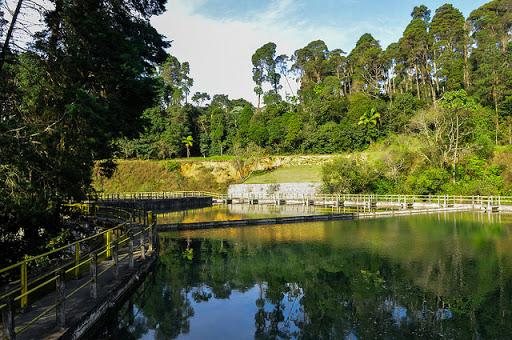 Reservatório Alto Cotia já recebeu mais chuva do que o esperado ...