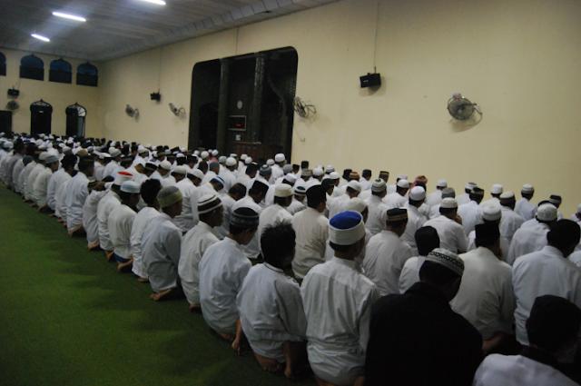 Materi Khutbah Jum'at Pelajaran Berharga dari 3 Serangga dalam Al-Qur'an