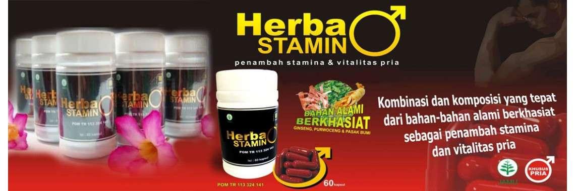 herbastamin penambah stamina dan vitalitas pria dewasa