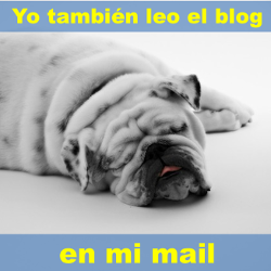 Sigue el blog en tu mail