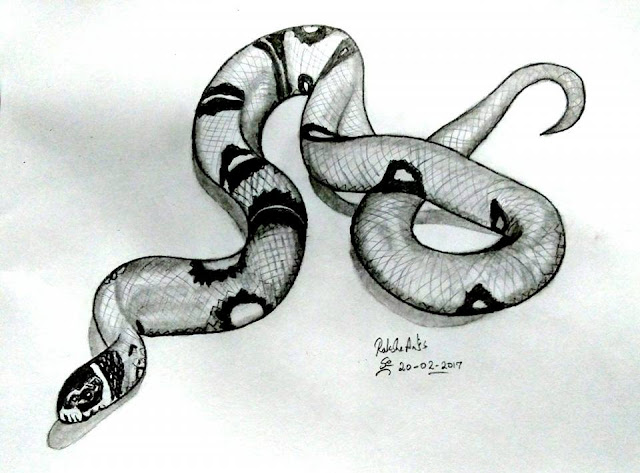3D PENCIL DRAWING - SNAKE