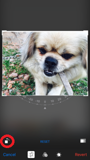 You can enable unlimited zoom of any photos on your iPhone and iPad without jailbreak in iOS 10.3.2/10.3.1/10/9 or below. You can zoom as much you want.