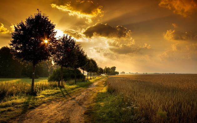Pemandangan Matahari Pagi  Gambar Pemandangan