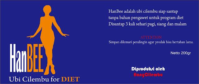http://www.bayuwin.com/2016/03/menu-diet-anda-menyiksa-kini-ada-hanbee.html