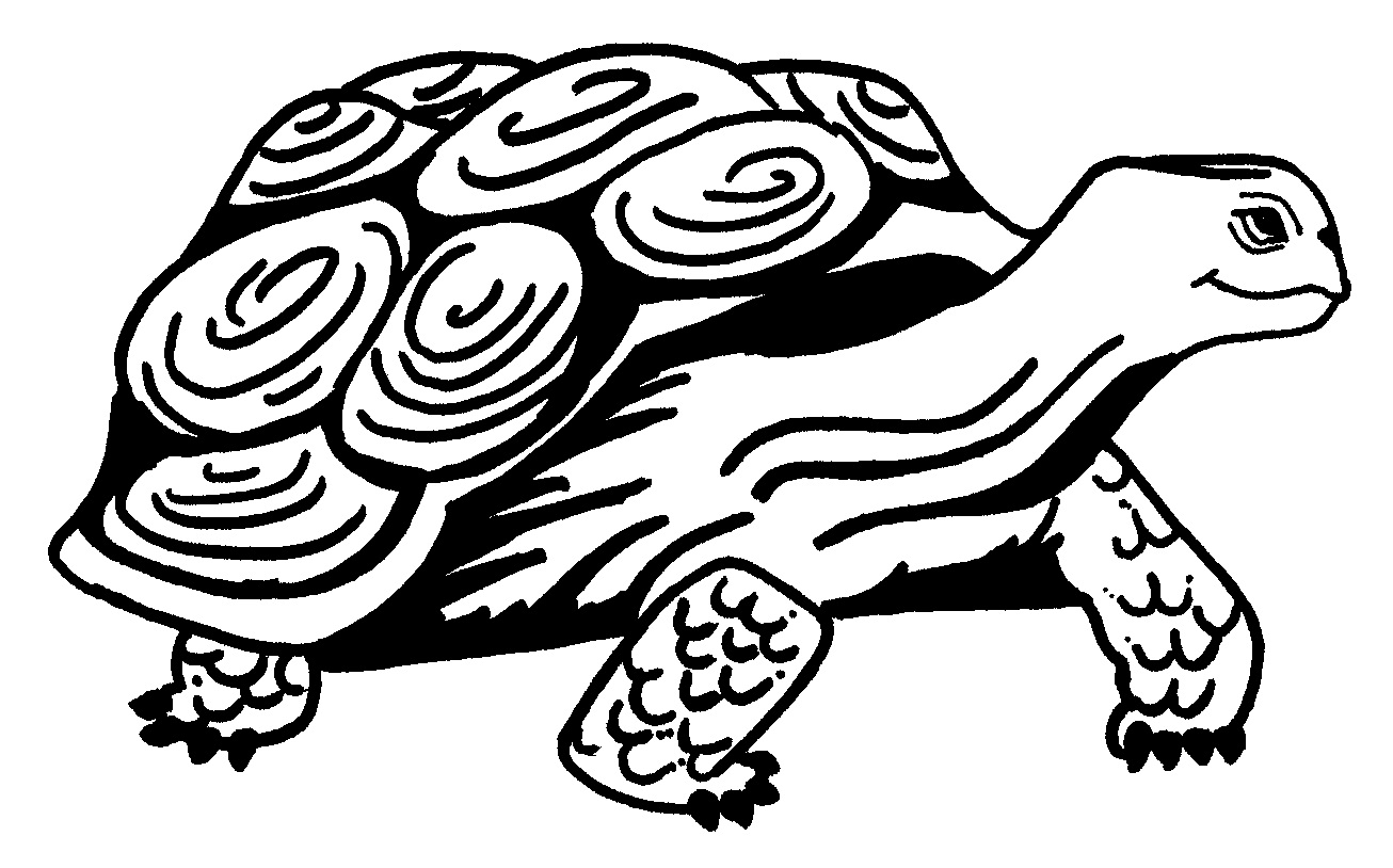 Best 15 Baby Turtle Coloring Pages Pictures