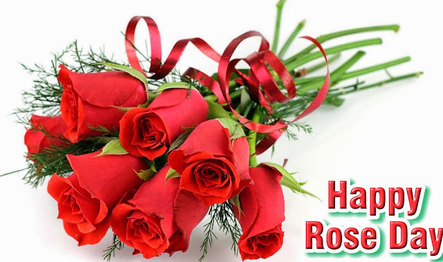 rose day twitter image