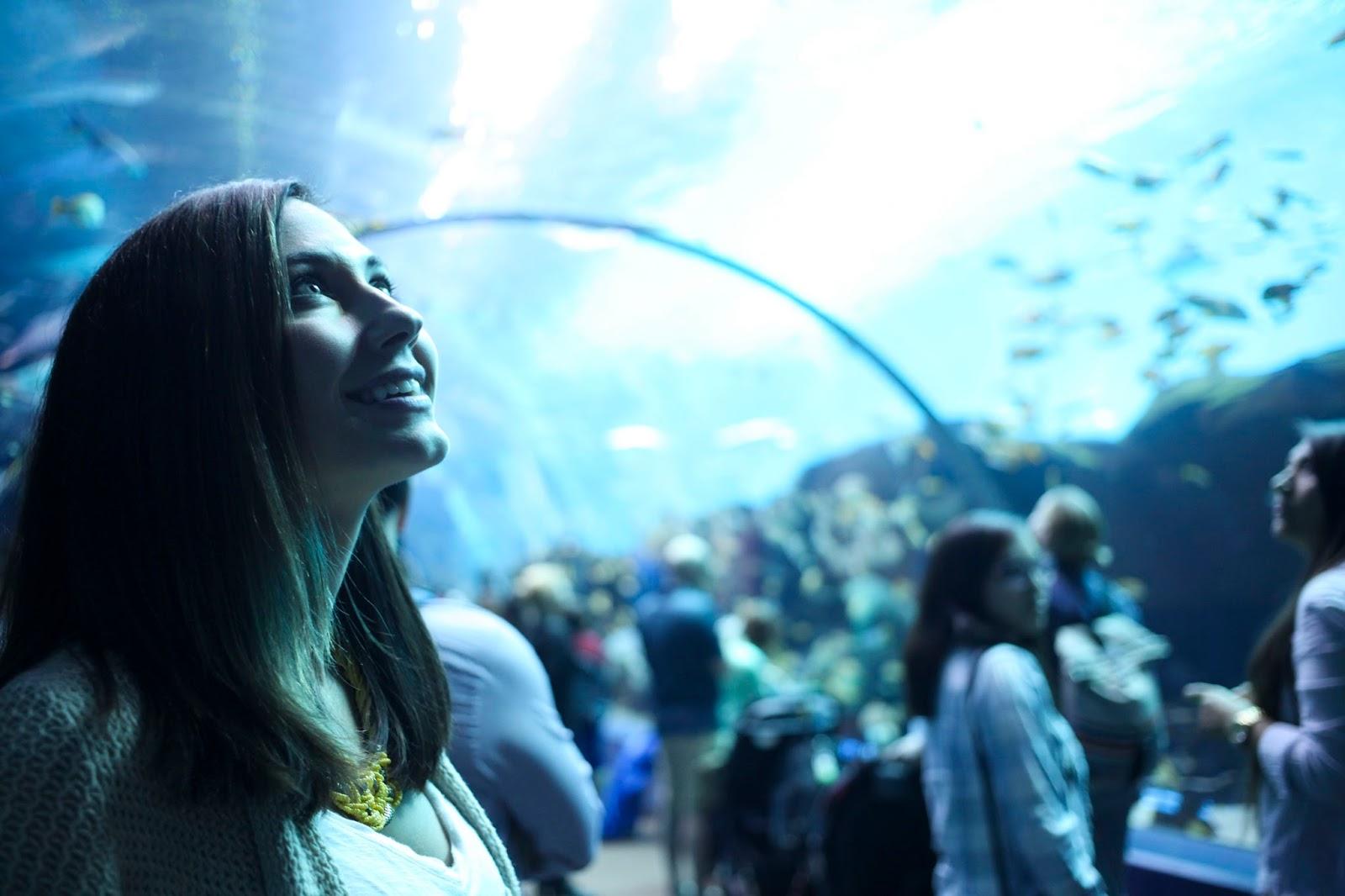 Amy West in the Georgia Aquarium Ocean Gallery