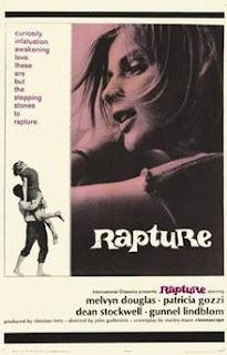 http://filmbantha.blogspot.co.uk/2016/07/essential-films-that-deserve-more-attention-rapture.html