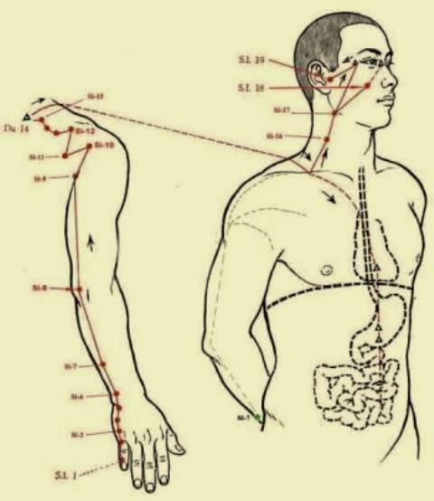 Tratamiento para dolor de cuello y hombros