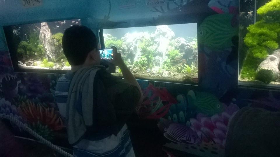 Khách tham quan chụp hình hồ thủy sinh của Vinh Aqua