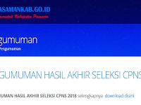 Pengumuman Hasil Akhir CPNS 2018 Kabupaten Pasaman