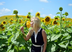 A woman loving the smell of sunflowers.