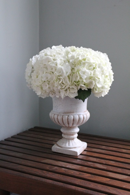 white stone urn vase garden style centerpiece white hydrangea Ann Arbor wedding florist sweet pea floral design pictured on mid century modern teak bench with sherwin williams comfort gray walls paint