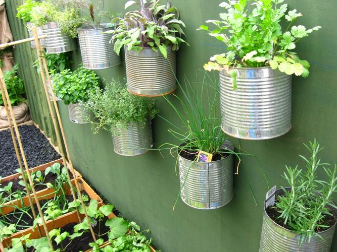 Home Kitchen Herb Garden