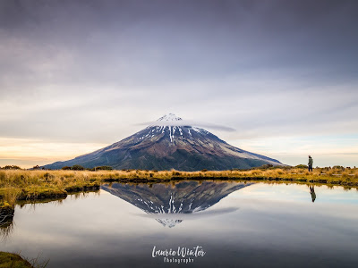New Zealand, NZ, Taranaki, Mt Taranaki, Sunrise, New Plymouth, Pouakai Crossing, Pouakai Tarn, Reflection