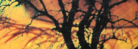 Los ojos del dragón, de Stephen King - Cine de Escritor