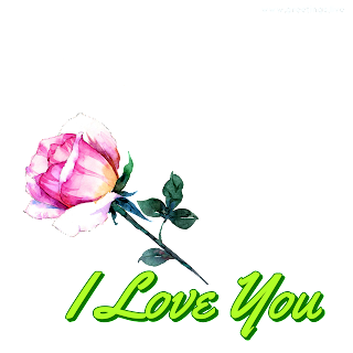 I love you rose  love proposal Greetings png image