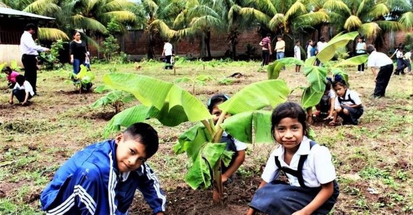 Colegio del Vraem gana concurso nacional en conservación del medio ambiente