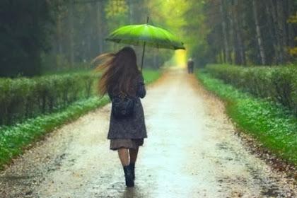 Tempat Dengan Intensitas Hujan Paling Besar Di Dunia !