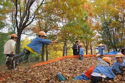 落ち葉プール!山梨県富士川クラフトパーク