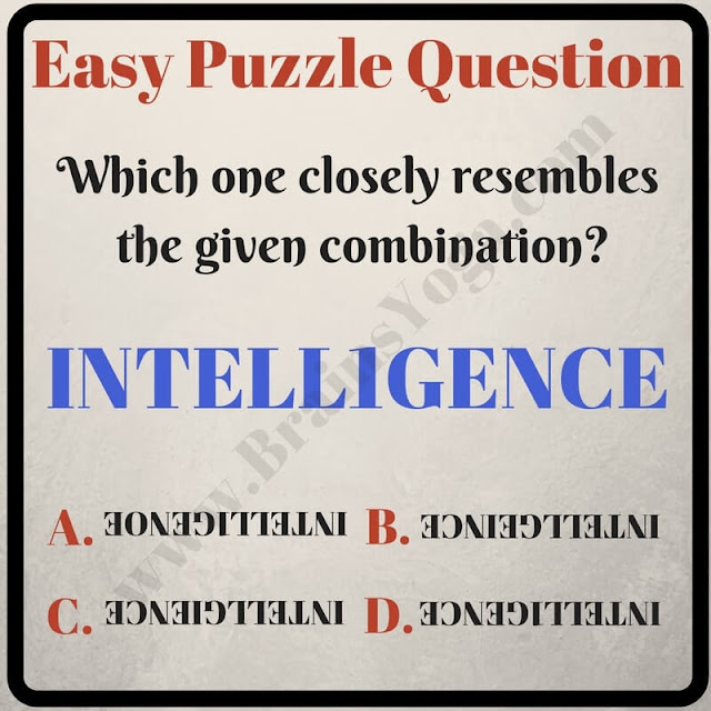 Visual Intelligence Picture Puzzle