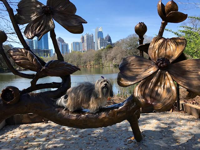 Dogwood sculpture Piedmont Park Rocco Havanese