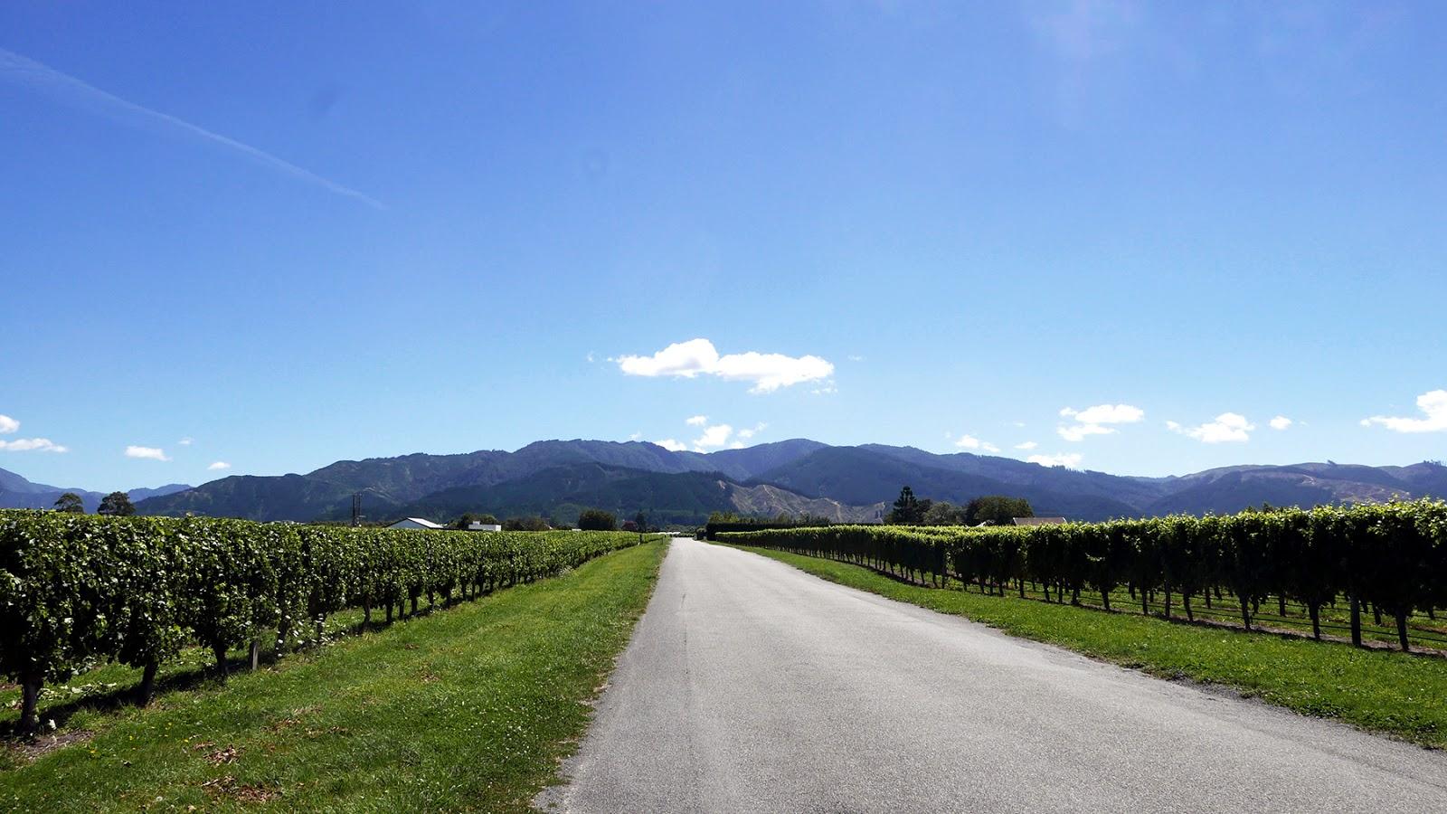 Euriental   luxury travel & style   Marlborough, New Zealand