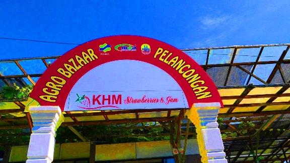 KHM Strawberries & Jam Ladang strawberry cameron higland brinchang