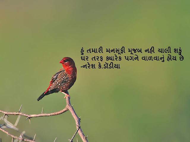 हुं तमारी मनसूफी मूजब नही चाली शकुं  Gujarati Sher By Naresh K. Dodia