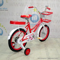 16 Inch Evergreen 16AP Butterfly Kids Bike