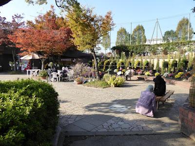 市民の森(鏡伝池緑地)ひらかた菊花展 コミュニティ広場