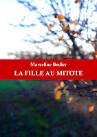 http://leslecturesdeladiablotine.blogspot.fr/2017/11/la-fille-au-mitote-de-marceline-bodier.html