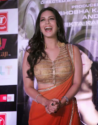 Sunny%2B%25285%2529 - Sunny Leone's Extreme Sexiest 3 Collections In Saree even try to show her Booms-SUNNY LEONE ka SEXY
