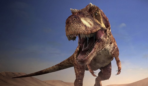 Alectrosaurus Açıklama