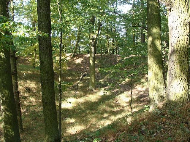 Wczesnośredniowieczne grodzisko pierścieniowate w Kociałkowej Górce