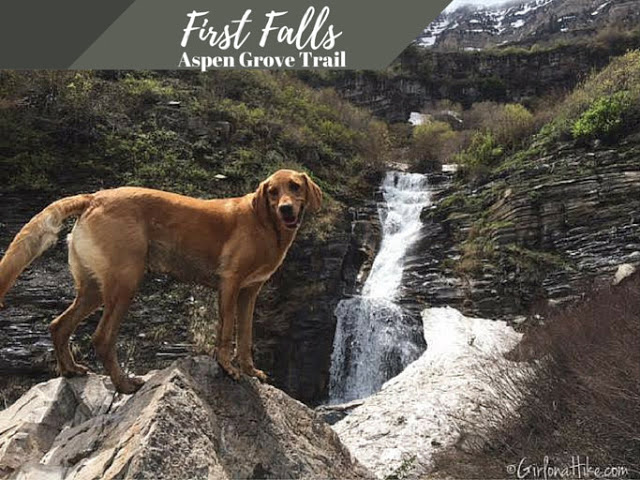 Hiking to First Falls, Aspen Grove Trail