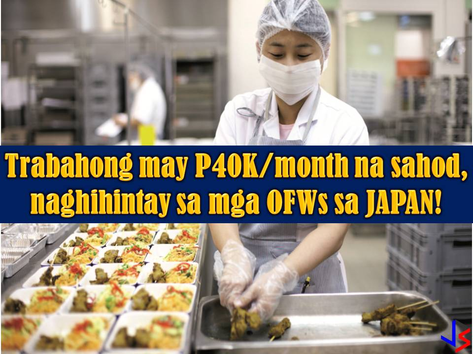 Repatriated Overseas Filipino Workers (OFWs) from Kuwait can no apply for work in Japan.  According to Department of Labor and Employment (DOLE), international employment opportunities in Japan are now awaiting OFWs including those who are distressed from Kuwait due to employment ban imposed by the Philippine government.