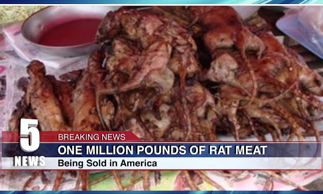 Million Pounds Of Rat Meat Being Sold As Boneless Chicken Wings In U.S.