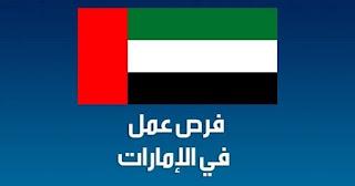 وظائف في دبي