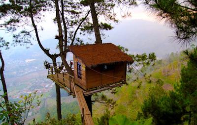 Paralayang & Rumah Pohon