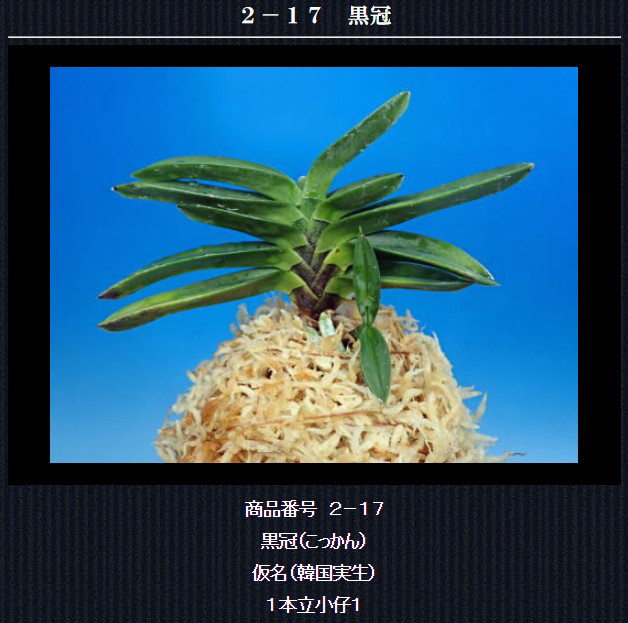 http://www.fuuran.jp/2-17.html