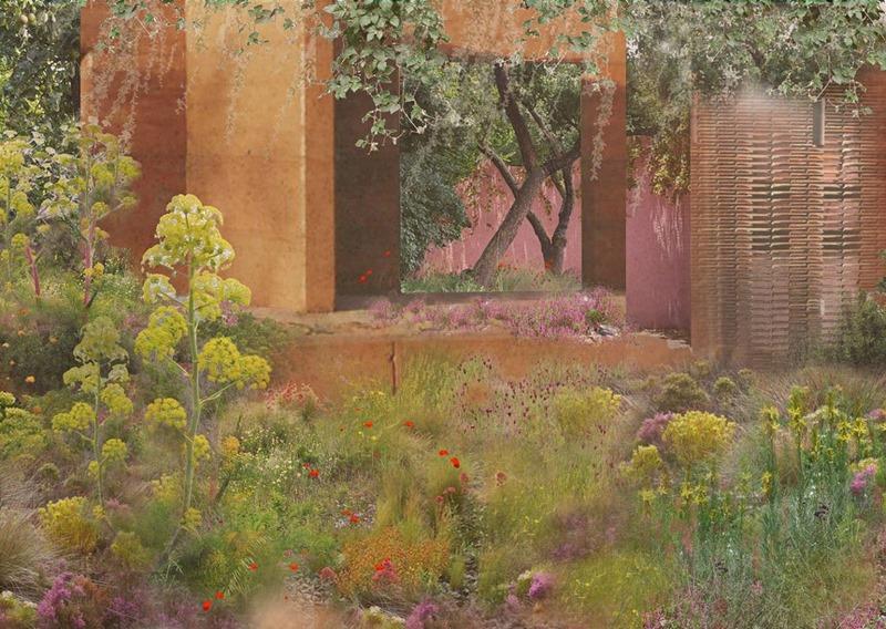 Diseño de jardin naturalista con plantas mediterráneas