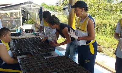 Estudantes da escola João de Barro/Apae da Ilha no dia de plantio de aroeiras e aprendizagem